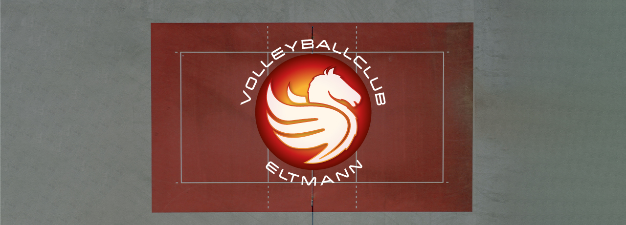 Volleyball Eltmann